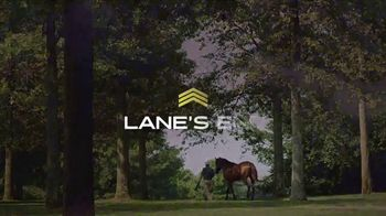 Lane's End TV Spot, 'Quality Road: A Stallion That Stands Above the Rest' - Thumbnail 9
