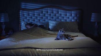 Bayer Advantage II TV Spot, 'Fight the Misery of Fleas' - Thumbnail 7