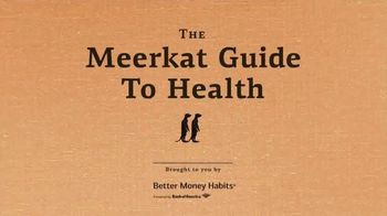 Bank of America TV Spot, 'VICELAND: Meerkat Guide to Health' - Thumbnail 1