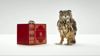 WGU Washington TV Spot, 'Owl Wisdom'