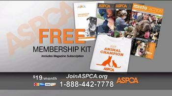 ASPCA TV Spot, 'Save Lives This Summer' - Thumbnail 8