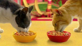 Friskies Gravy Swirlers TV Spot, 'Crunchy Gravy' - Thumbnail 5