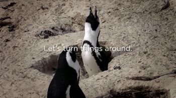San Diego Zoo Global Wildlife Conservancy TV Spot, 'Save Penguins'