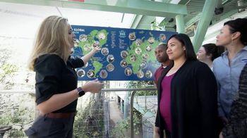 San Diego Zoo Global Wildlife Conservancy TV Spot, 'Save Penguins' - Thumbnail 5