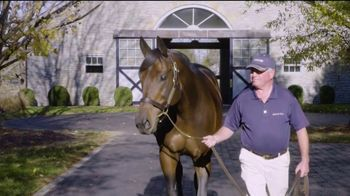 Coolmore America TV Spot, 'Uncle Mo: The Momentum Continues' - Thumbnail 1