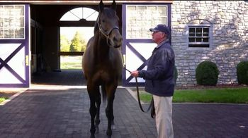 Coolmore America TV Spot, 'Uncle Mo: The Momentum Continues' - Thumbnail 3