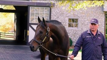 Coolmore America TV Spot, 'Uncle Mo: The Momentum Continues' - Thumbnail 4