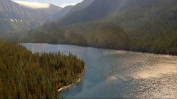 Arbor Day Foundation TV Spot, 'Replant Our National Forests' - Thumbnail 2
