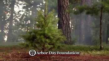 Arbor Day Foundation TV Spot, 'Replant Our National Forests' - Thumbnail 7