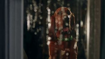 Rover.com TV Spot, 'When There's Thunder, We've Got Cuddles' - Thumbnail 1