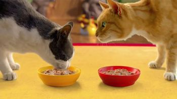 Friskies Extra Gravy Chunky TV Spot, 'Purradise' - Thumbnail 8