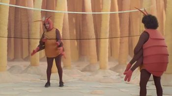 GEICO TV Spot, 'Fleas Playing Badminton'