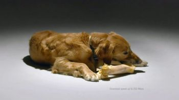 Comcast Business TV Spot, 'Dog Bones' - Thumbnail 7