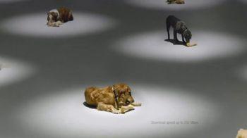 Comcast Business TV Spot, 'Dog Bones' - Thumbnail 8