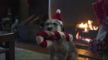 TJX Companies TV Spot, 'Squeaky Toy Jingle Bells' - Thumbnail 3
