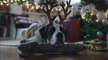 TJX Companies TV Spot, 'Squeaky Toy Jingle Bells' - 551 commercial airings