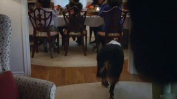 Meijer TV Spot, 'The Perfect Thanksgiving' - Thumbnail 4