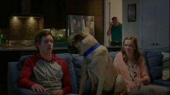 Cosequin TV Spot, 'New Boyfriend'