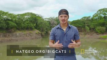 National Geographic TV Spot, 'Save Big Cats: Tiger' Feat. Filipe DeAndrade - Thumbnail 4