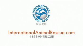 International Animal Rescue TV Spot, 'Joyce the Orangutan' - Thumbnail 10
