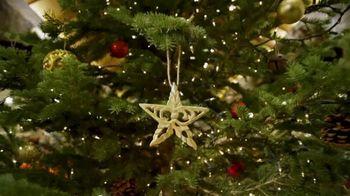 Cabela's Christmas Sale TV Spot, 'Celebrate the Seasons: Gift Cards' - Thumbnail 6