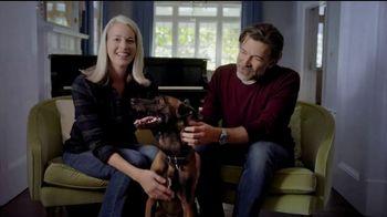 SimpliSafe Holiday Sale TV Spot, 'We Have a Dog'