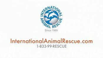 International Animal Rescue TV Spot, 'Bean the Sloth Bear' - Thumbnail 9