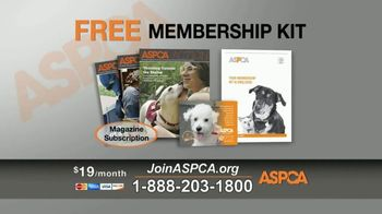 ASPCA TV Spot, 'Season of Giving' - Thumbnail 7
