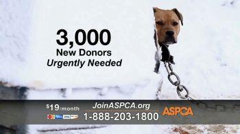 ASPCA TV Spot, 'Season of Giving'