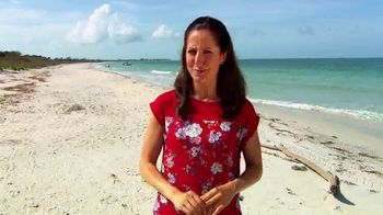 The Beaches of Fort Myers and Sanibel TV Spot, 'National Seashell Day' - Thumbnail 2