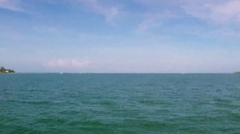 The Beaches of Fort Myers and Sanibel TV Spot, 'National Seashell Day' - Thumbnail 4