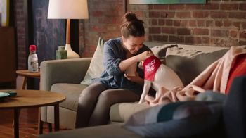 Coffee-Mate Ice Cream Shop TV Spot, 'Stir Up New Friends' - 6343 commercial airings
