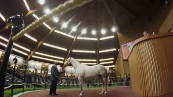 Keeneland TV Spot, 'Founded by Horsemen' - 12 commercial airings