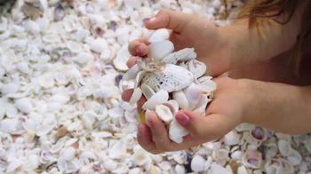 The Beaches of Fort Myers and Sanibel TV Spot, 'Islandology No. 1' - Thumbnail 7