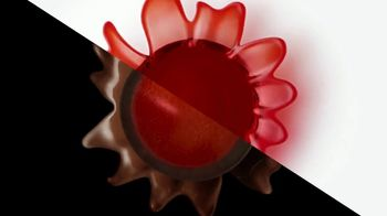 Brookside Chocolate TV Spot, 'For All Your Sides' Song by Pete Rodriguez - Thumbnail 6