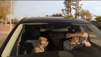 A/C Pro Ultra Synthetic A/C Recharge TV Spot, 'Dog Days' - Thumbnail 1