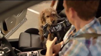 A/C Pro Ultra Synthetic A/C Recharge TV Spot, 'Dog Days' - Thumbnail 5
