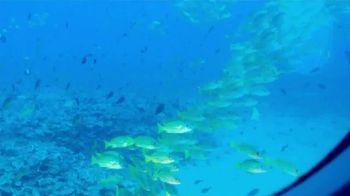 The Hawaiian Islands TV Spot, 'Submarine Trip' Featuring Brandt Snedeker - Thumbnail 8