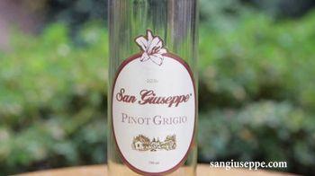 San Giuseppe Pinot Noir TV Spot, 'Did You Know?' - Thumbnail 3