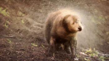 Waterpik Pet Wand Pro TV Spot, 'Shower Wand' - Thumbnail 2