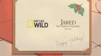 Jared TV Spot, 'Nat Geo Wild: Finding the Perfect Gift' - Thumbnail 8