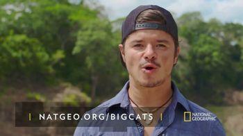 National Geographic TV Spot, 'Save Big Cats: Jaguar' - Thumbnail 9
