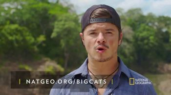 National Geographic TV Spot, 'Save Big Cats: Jaguar' - Thumbnail 8