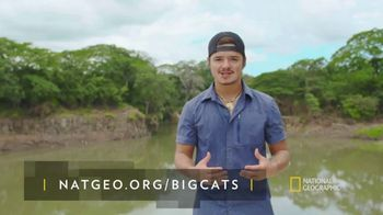 National Geographic TV Spot, 'Save Big Cats: Leopard' - Thumbnail 8