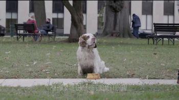 The Center for Consumer Freedom TV Spot, 'Help Homeless Pets' - Thumbnail 1