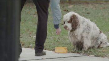 The Center for Consumer Freedom TV Spot, 'Help Homeless Pets'