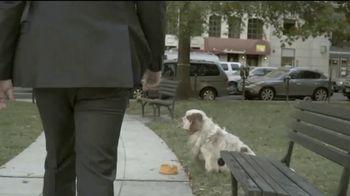 The Center for Consumer Freedom TV Spot, 'Help Homeless Pets' - Thumbnail 4