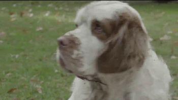 The Center for Consumer Freedom TV Spot, 'Help Homeless Pets' - Thumbnail 5