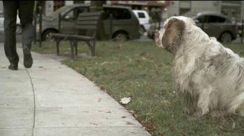 The Center for Consumer Freedom TV Spot, 'Help Homeless Pets' - Thumbnail 6