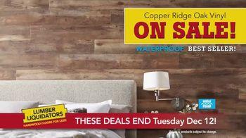 Lumber Liquidators Hardwood Sale TV Spot, 'Get a Deal, Get It Done' - Thumbnail 7